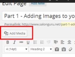 Edit Page ‹ Salon Guru Websites and Marketing — WordPress