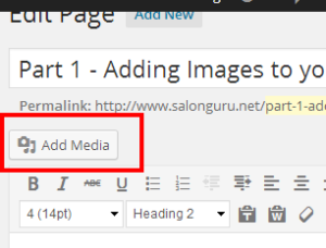 Edit Page ‹ Salon Guru Websites and Marketing — WordPress