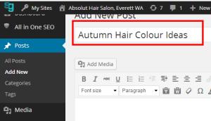 Salon WordPress H1 Titles